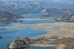 skadar_lake_boat_milica (boatmilicalakeskadar) Tags: skadar lake boat nature montenegro lakeskadar cruising
