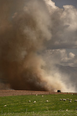 Disgraceful (M J Adamson) Tags: farmers burnoff southcanterbury nz newzealand disgrace pollution smoke