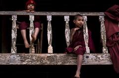 Rechercher autour de soi (Noémie dSP) Tags: 6d birmanie buddhists canon canon6d eos6d monk monks myanmar buddhism buddhist boudhisme novices red rouge arseal