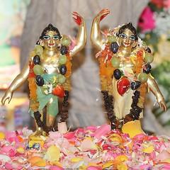 Gaura Purnima - Lord Caitanya's Appearance Day - ISKCON-London - 12/03/2017 - IMG_9461 (DavidC Photography 2) Tags: 10 soho street radhakrishna radha krishna temple hare krsna mandir london england uk iskcon iskconlondon internationalsocietyforkrishnaconsciousness international society for consciousness winter spring sunday 12 12th march 2017 lord caitanya chaitanya mahaprabhu mahaprabhus appearance day gaura purnima gauranitai nityananda nimai nitai abhishek bathing ceremony gauranga