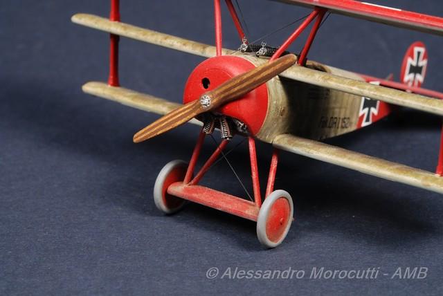 Fokker DR.I (17)