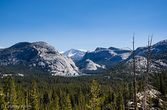 A View from Lembert's Dome (lindsay_kaun) Tags: california mountains landscapes yosemitenationalpark tiogaroad lembertsdomes