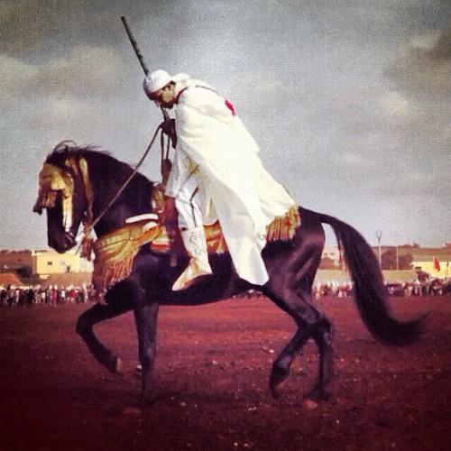 عقيد مغربي يستعرض في مهرجان الحصاد السنوي        كازابلانكا،،،  تصوير : شاهين - ( NikonD-100)   العقيد بالمغرب هو قائد الفرقة من الفرسان المقاتلين ،،،