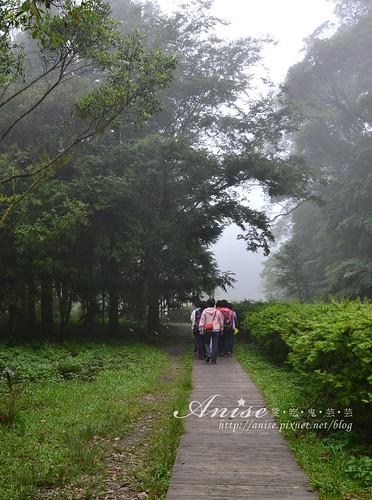 福山植物園_009.jpg