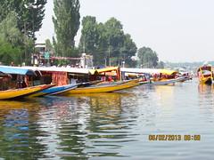 Dal Lake @ 9.59AM (Sudip Majumder2012) Tags: kashmirindia aparadiseonearth