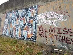 Rats? (Franny McGraff) Tags: portland graffiti