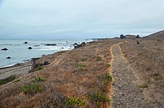 Looking west on Estero Bluffs Trail Photo