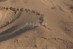 Karama Site 4 (APAAME) Tags: flight1 flying2006 digitalcamera fort aerialarchaeology aerialphotography middleeast airphoto archaeology ancienthistory
