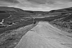 PONT AR ELAN (markandrew_2492) Tags: wales landscape roads powys midwales rhayader cwmelan elanvalley welshhills bwlandscapes bwlandscape landscapewales britishlandscape welshlandscape waleslandscape welshmountains waleshills bwmountains greatbritishlandscape afonelan landscapeuk walesmountains pontarelan walesroads