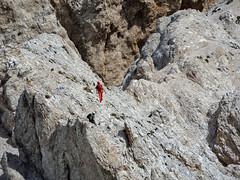 Escursionismo Gran Sasso - Via Cieri