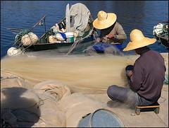 Nets (Christian Lagat) Tags: china shadow lake hat fishermen straw lac ombre chapeau 中国 yunnan dali nets chine paille erhai 大理 pêcheurs 云南 filets sonynex6