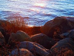 (Marie Granelli) Tags: ocean november autumn water skne sdersltt nikons8000