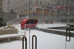 NYC: Fallon w Wild Cub (dylonyork) Tags: street new york city nyc blue wild snow vortex storm rock 30 hotel cub bottle chelsea market maritime espresso polar 9th wildcub