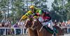 By a nose (APGougePhotography) Tags: horse sc race south southcarolina adobe dogwood races aiken stables topaz infocus d600 adobelightroom topazlabs aikentrials aikentrainingtrack topazinfocus