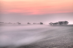 A Little Mist (nalamanpics) Tags: uk mist color colour nature beautiful landscape photography dawn countryside devon exeter dreamy mistymorning colourfulsky impressedbeauty devoncountryside mygearandme mygearandmepremium mygearandmebronze