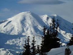 Rainier from Northway (Matt Mimosa) Tags: winter snow snowboarding skiing glacier mountrainier mountrainiernationalpark tahoma skiarea crystalmountain emmons northway subalpinefir northwaypeak crystalsummit summitofcrystalmountain