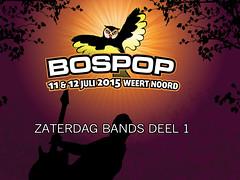zat-bands-1