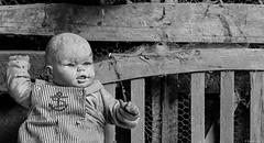 The baby (BenoitGEETS-Photography) Tags: noiretblanc nb bw d610 2470 f28 tamron nikonpassion poupée creepy doll geets benoitgeets misterblue blackwhite