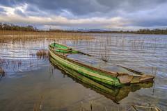 Best days behind (irishman67) Tags: fenloughlake newmarketonfergus lake countyclare ireland boat water winter reeds tranquil fenloe fenloelake
