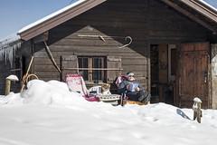 Lazy Sunday (Bergfex_Tirol) Tags: bergfex snow pasture autriche oesterreich almhütte oostenrijk alpinepasture lofer hut gebirge alpes winter mountains austria schnee österreich alpen alps almenwelt hund dog mann man urlaub holiday vacation lazy