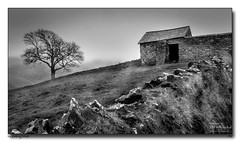 Incoming-Mist (jeremy willcocks) Tags: countisbury england uk barn tree mist blackandwhite field wall stone mono roof jeremywillcocks wwwsouthwestscenesmeuk fujixpro2 xf1024mm