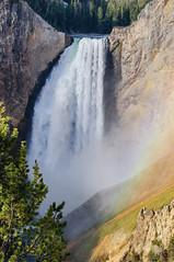 Lower yellowstone Falls - the near view (CloudRipR) Tags: park yellowstonenationalpark yellowstone river waterfall water sunrise rocks nikon d300