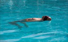1-7451 (Ijsberen-Boom) Tags: boom ijsberen kzcyboom doop swim zwemclub zwemmen vlaanderen belgium