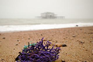 Purple flotsam