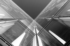 X white (Rudy Pilarski) Tags: x blackandwhite paris bnf nikon d7100 tamron sky reflection reflet lines thebestoffnikon ciel urbain line urban abstract abstrait point de vue geometry geometrie nb noir et blanc monochrome