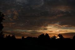Heaven above (Dreaming of the Sea) Tags: nikon d7200 dusk clouds bluesky tamronsp2470mmf28divcusd tamron2470mm sunset twilight palmtrees storm topf25 500v20f 1000v40f 1500v60f 7dwf