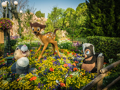 Epcot 2017 Flower & Garden Festival (J&E Adventures) Tags: olympus details disneydetails travel disney photography epcot olympusomd waltdisney vacation mirrorless springtime color baylake florida unitedstates us