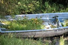 Ketchikan AK ~ rowing back to nature (karma (Karen)) Tags: ketchikan alaska herringcove rainforest boats backtonature grasses shadows topf25
