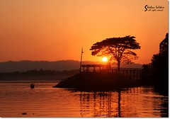 Tranquility (he Dsolate O) Tags: sunset lake color colour tree water silhouette landscape asia tranquility bangladesh rangamati kaptai