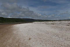 the white shore (ztephen) Tags: shells white beach scotland galloway rspb mersehead
