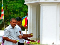"Ofrendas • <a style=""font-size:0.8em;"" href=""http://www.flickr.com/photos/92957341@N07/9166317070/"" target=""_blank"">View on Flickr</a>"