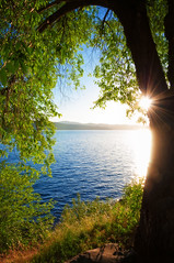 Lake Coeur d'Alene (Gabriel Tompkins) Tags: blue trees sunset summer sky usa sun sunlight lake green water beautiful beauty leaves rock landscape leaf nikon colorful warm bright vibrant framed idaho foliage shore lensflare frame flare pacificnorthwest translucent ripples nikkor pnw magichour cda coeurdalene goldenhour starburst 18105 mytop translucency d90 2013 starpoints idahostate 18105mm nikond90 18105mmf3556gvr tronam gabrieltompkins tronamcom