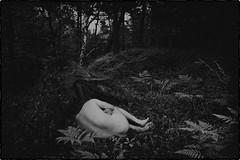* (Johan Gustavsson) Tags: blackandwhite bw selfportrait forest self naked experimental body experiment svartvit kropp svartvitt naken johangustavsson