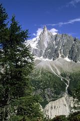 Chamonix-Mont-Blanc, les Drus vus depuis le signal Forbes (Ytierny) Tags: dru france vertical montagne piton neige chamonix arbre montblanc excursion sapin glace alpinisme massif randonne hautesavoie aiguille granit montenvers nv alpesdunord signalforbes ytierny