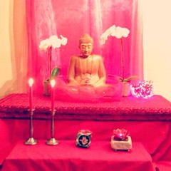 Hello Everyone,   I wanted to share a picture of our shrine at the Seattle Sangha, sorry it is a little blurry. We kicked off the urban retreat last night with a dedication ceremony, followed by a meditation, listening and watching the materials from this