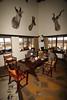 Namibia Safari - Lake Lodge 7