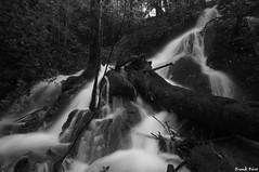 Deuxième Cascade extrème amont du ruisseau du Creux Lague - Blègny - Variation Noir et Blanc (francky25) Tags: noir du jura et cascade blanc variation franchecomté ruisseau creux lague deuxième extrème amont blègny