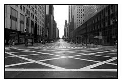 East 42nd Street afteer evacuatioin (flickonce) Tags: street city nyc newyorkcity blackandwhite newyork building blancoynegro blackwhite nikon noiretblanc manhattan naturallight trainstation grandcentralstation 42 gerber 42ndstreet novaiorque raimbow flickonce silviagerberphotography