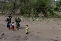10071667 (wolfgangkaehler) Tags: africa people woman tanzania person african firewood carrying lakemanyara eastafrica eastafrican tanzanian environmentalimpact tanzaniaafrica environmentalissue lakemanyaratanzania environmentalconcern {vision}:{outdoor}=0987