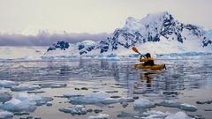 Antarctica Aitcho Island (Dan Cosmin) Tags: blue sun ice water penguins kayak outdoor antarctica seal kayaking whale iceberg