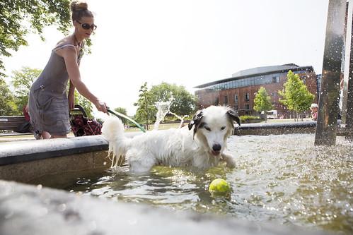 Stratford water fountain