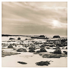 Frozen Beach (thomagraphy) Tags: darkroom lithprint silverprint darkroomprint silvergelatine bromesko moerschchemicals trix400inefd letnayazolotitsa onezhskoepomore wsg2s