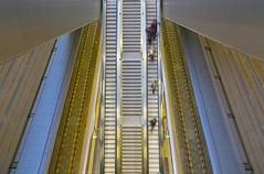 Hauptbahnhof (Leipzig) (fotoeins) Tags: travel canon germany deutschland eos europa europe saxony leipzig hauptbahnhof sachsen sbahn 6d canonef24105mmf4lisusm leipzighbf henrylee eos6d fotoeins henrylflee sbahnmitteldeutschland fotoeinscom