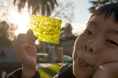 Seaweed Sunscreen - #58 (acyee) Tags: acyee nori seaweed kaiduncanyee mariposapark