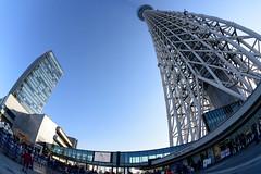 Skytree Town (H.H. Mahal Alysheba) Tags: sky blue skytree tokyo tokyoskytree japan fisheye sigma 15mmf28 nikon d800 building architecture