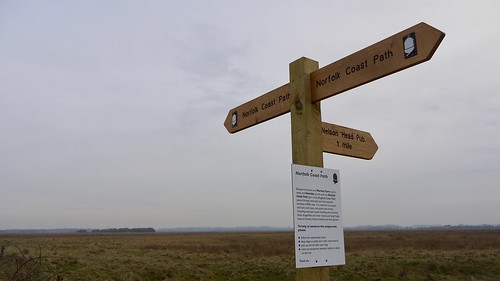 The Norfolk Coast Path along Seals on Horsey Beach